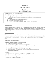 Comparison Essay Example Free Examples Of An Essay Sample Essay For High Students Example