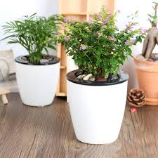 self watering plants the big list of self watering planters for stylish gardening