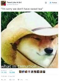 Sweet Memes - sorry we don t have sweet tea what in tarnation know your meme