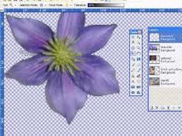 43 best tutorials graphic design applications paint net images