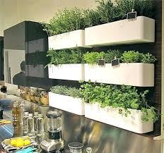 indoor wall garden diy indoor wall herb garden great indoor vertical garden best ideas