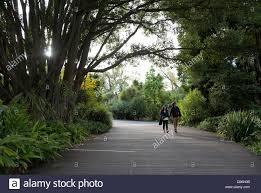couple walking through royal botanic gardens melbourne australia
