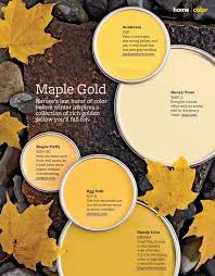 maple gold paint colors from better homes u0026 gardens 328 sunbeam