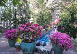 Botanic Gardens Dc Inside The Us Botanic Garden Garden Shoots