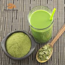 Bulk Skin Care Ingredients Bulk Moringa Powder Bulk Moringa Powder Suppliers And
