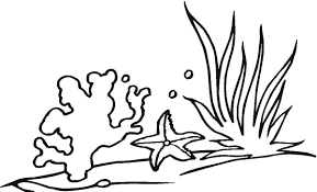 seaweed coloring pages getcoloringpages com
