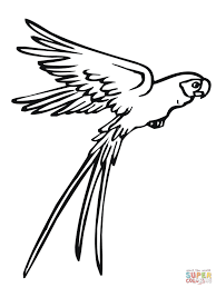 flying bird coloring pages getcoloringpages com