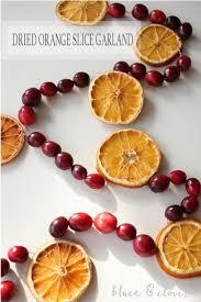 best 25 dried orange slices ideas on