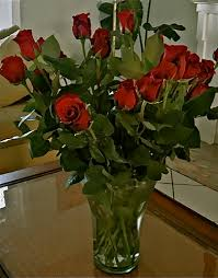 ecuador valentine roses