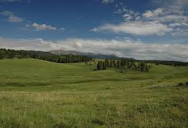 hunting land for sale mason morse ranch company