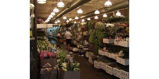 wholesale flowers near me theafterhoursflowers new york wholesale flower markets