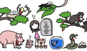 New Por que alguns animais comem seus filhotes? #HR25