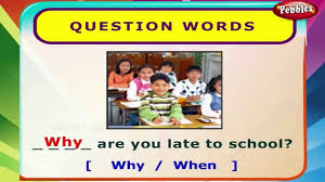 question words english grammar exercises for kids english