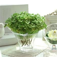 plants artificial picture more detailed picture about 30pcs