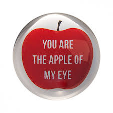sugarboo designs apple of my eye paperweight a cottage in the city
