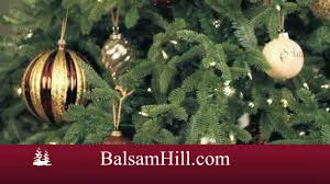 balsam hill perfect christmas tree youtube
