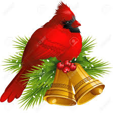 cardinal bird with christmas bells over white royalty free