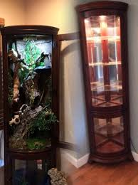 What To Put In A Curio Cabinet Reptile Furniture Cage Curio Cabinet This Would Be Great For A