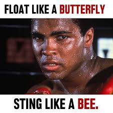 float like a butterfly sting like a bee canvas icanvas