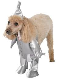 Halloween Costumes Angels Tin Man Dog Angels Fancy Dress Costumes Halloween Costumes