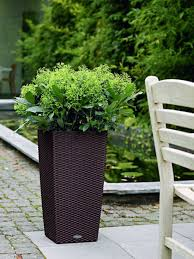 wicker planter cubico cottage self watering 22