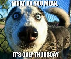 Thursday Meme Funny - thursday meme funny memes