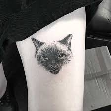 35 cat tattoos that are guaranteed to leave you