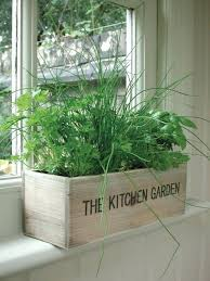 Kitchen Windowsill Grow An Herb Garden In A Kitchen Window Herb Garden For Kitchen