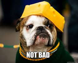 Bad Dog Meme - not bad not bad dog quickmeme