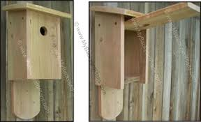 free bluebird house plans how to build a bird house