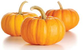 calabazas de halloween concurso spammer del mes de octubre halloween archivo