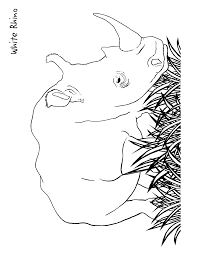 rhino coloring page education coloring pages animals