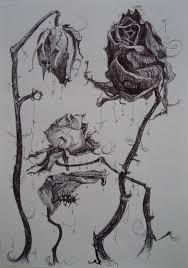 tattoo flower drawings rose wilted flower tattoo dead roses drawing dead flower drawing