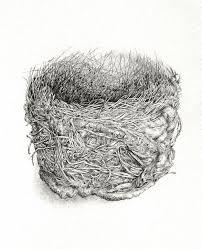 12 best australian birds nests images on pinterest australian