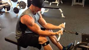 preacher curl variation cable row youtube