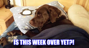 So Tired Meme - is this week over yet imgflip