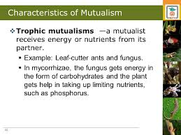 chap 14 mutualism and commensalism ppt download