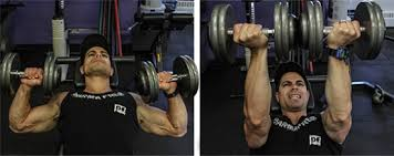 Reverse Grip Bench Press Upper Chest Chest Day 101 Top Dumbbell Exercises The Zone