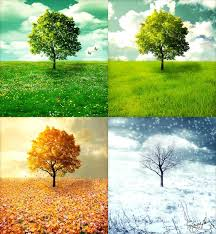 45 best 4 seasons images on pinterest four seasons nature and fall