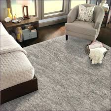 Lowes Area Rug Sale Lowes Area Rugs Icedteafairy Club