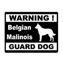 belgian malinois en espanol belge malinois chiens achetez des lots à petit prix belge malinois
