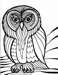 Owl Coloring Pages Coloring Pages And Owl On Pinterest Printable Owl Color Pages