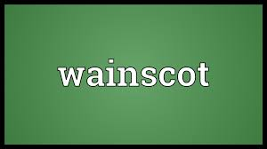 Definition Of Wainscot Wainscot Meaning Youtube