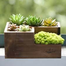 Square Planter Pots by Popular Flowerpot Square Buy Cheap Flowerpot Square Lots From
