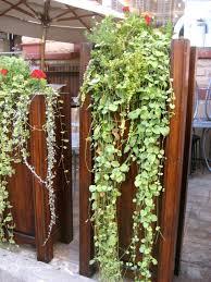 How To Make Vertical Garden Wall - image from crest hardware urban garden center top 10 cool
