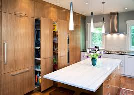 kitchen contemporary kitchen design from cambridge duplex near harvard square cambridge massachusetts contemporary