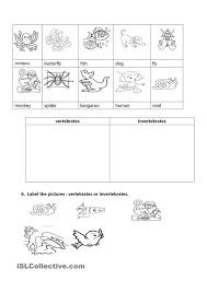 free printable worksheets vertebrates invertebrates vertebrates and invertebrates living nature seasons pinterest
