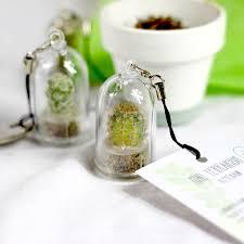 personalised mini terrarium cactus keychain mini terrarium