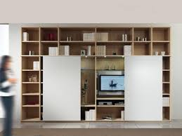 modular structure with bookshelf and tv stand 2 sliding doors
