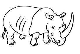 rhino coloring coloring